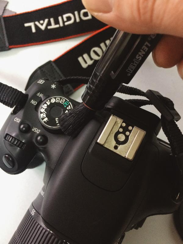 Limpieza de la cámara - cepillado