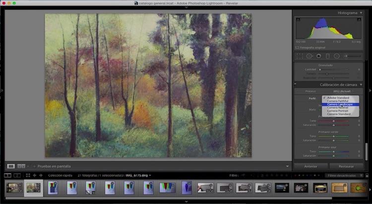 Curso de Adobe Lightroom 5 – Capítulo 58: Colores reales con una tarjeta gris